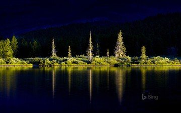 trees, lake, mountains, nature, forest, reflection, bing