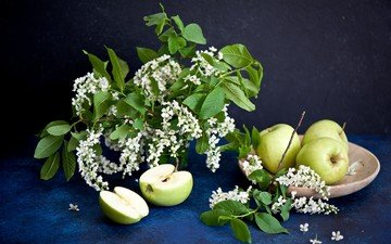 branches, fruit, apples, bouquet, plate, still life, cherry, green apples