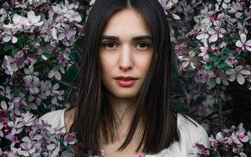 цветы, цветение, девушка, портрет, брюнетка, ветки, взгляд, сад, весна, макияж
