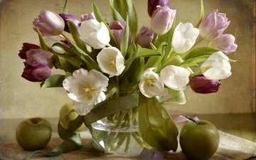 flowers, fruit, apples, tulips, vase, tape