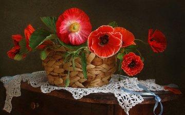 цветы, маки, ленточка, салфетка, корзинка, натюрморт, тумбочка