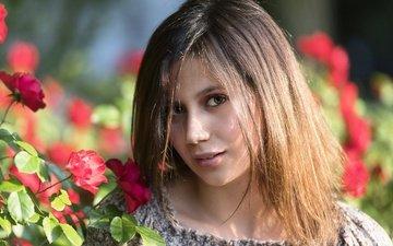 цветы, розы, взгляд, волосы, лицо, chiara