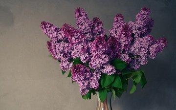 цветы, весна, букет, ваза, сирень, композиция