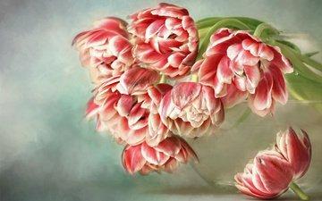 цветы, тюльпаны, ваза, аквариум, пастель