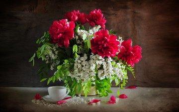 цветы, ветки, лепестки, букет, чашка, салфетка, пионы, акация