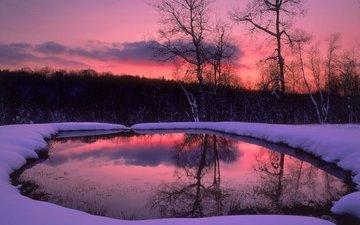 деревья, вечер, озеро, снег, лес, зима