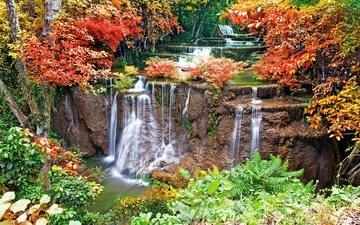 деревья, вода, камни, листья, водопад, осень, мох