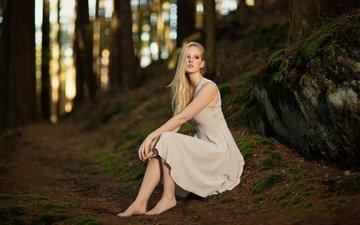 деревья, лес, девушка, фон, платье, блондинка, босиком, софи