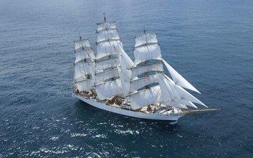 photo, the ocean, sailing ship, cisne branco