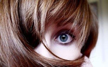 глаза, девушка, взгляд, волосы, лицо