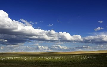the sky, clouds, field, horizon, blue sky