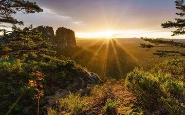 деревья, горы, скалы, солнце, природа, лес, закат, лучи, ветки, швейцария