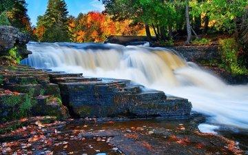 лес, водопад, осень