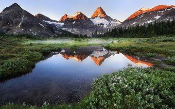 небо, деревья, озеро, горы, растения, отражение