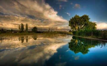 небо, трава, облака, деревья, вода, река, отражение
