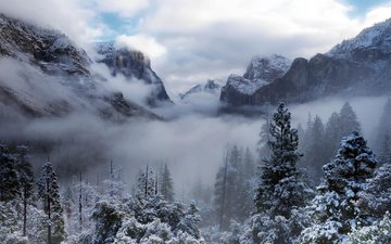 облака, деревья, горы, снег, природа, лес, сша, калифорния, йосемити, йосемитский национальный парк