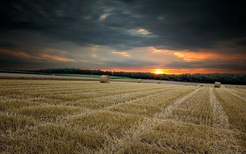 the sky, grass, clouds, nature, sunset, landscape, field, horizon, wheat, twilight