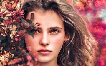 цветы, цветение, девушка, портрет, взгляд, модель, весна, волосы, лицо