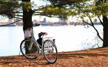 river, the city, canada, ontario, bike, qc