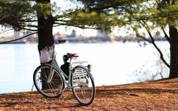 река, город, канада, онтарио, велосипед, квебек