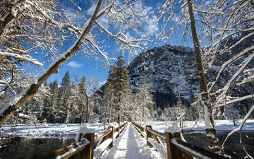 trees, river, snow, nature, winter, mountain, bridge, ca, yosemite national park