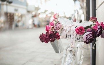 розы, улица, велосипед