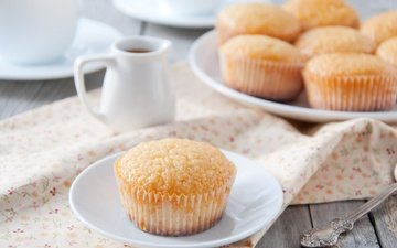 sweet, cakes, cupcakes, muffins