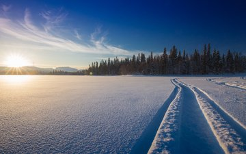 snow, nature, forest, winter, track, finland