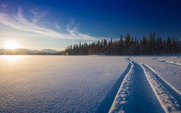 снег, природа, лес, зима, дорожка, финляндия