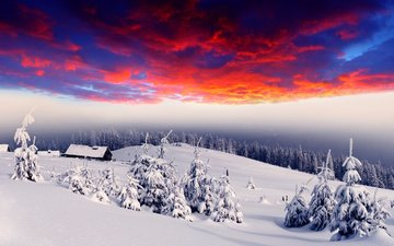 snow, nature, forest, sunset, winter, dawn, houses, tree, village, glow, red sky, hills