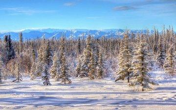 небо, горы, снег, природа, зима, пейзаж, аляска, деревья