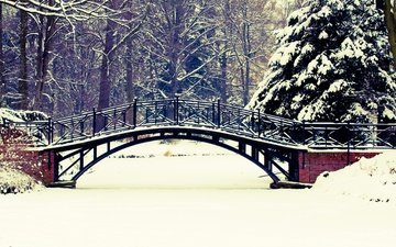 trees, snow, nature, winter, landscape, park, bridge