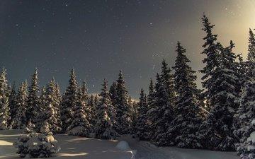 снег, природа, зима, россия, деревья, национальный парк иремель, белорецк