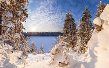 небо, облака, озеро, снег, зима, иней, россия, сосны, арсений кашкаров, озеро ястребиное, ленинградская область