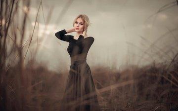 трава, блондинка, прическа, фигура, позирует, на природе, б в чёрном