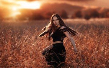 трава, солнце, природа, девушка, поза, поле, взгляд, модель, лицо, шатенка, в чёрном, алессандро ди чикко