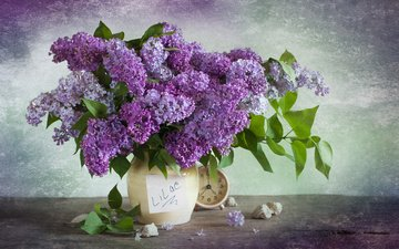 flowers, leaves, watch, shell, bouquet, vase, lilac, alarm clock, still life