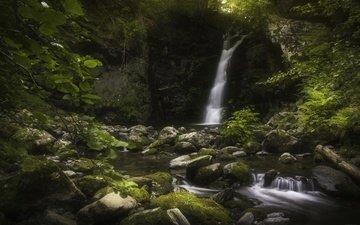 вода, камни, водопад, мох