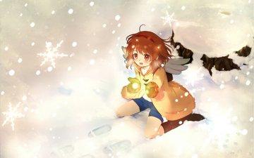 winter, snowflakes, anime