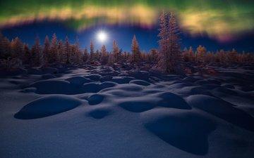 вечер, снег, природа, зима, луна, северное сияние