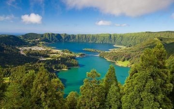 озеро, природа, лес, пейзаж