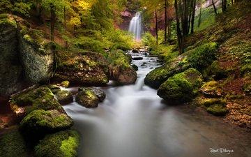 река, природа, лес, водопад, осень
