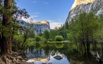 река, горы, природа, лес, пейзаж, йосемите