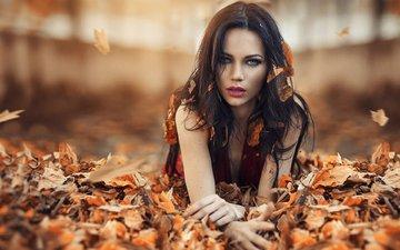 девушка, брюнетка, осень, модель, алессандро ди чикко
