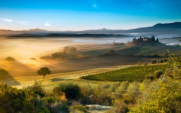 nature, landscape, morning, field, fog, summer, italy, valley, estate, tuscany