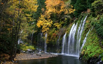river, nature, forest, waterfall, autumn