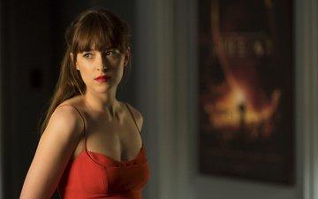 девушка, взгляд, волосы, лицо, актриса, дакота джонсон, на пятьдесят оттенков темнее, анастейша стил, фильм ‧