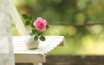 цветок, роза, стул, ваза, боке, вазочка