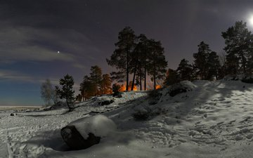 the sky, light, clouds, night, trees, snow, nature, winter, pine, hill