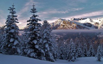 mountains, nature, forest, winter, landscape